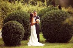 Jeunes mariés dans les jardins Photos stock