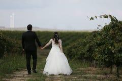 Jeunes mariés dans les vignes Images stock