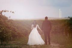 Jeunes mariés dans les vignes Image libre de droits