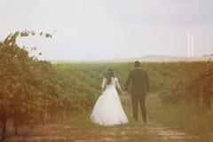 Jeunes mariés dans les vignes Photographie stock libre de droits