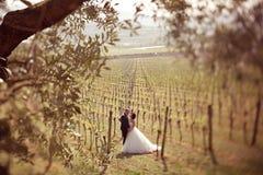 Jeunes mariés dans un vignoble Photos stock