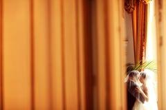 Jeunes mariés dans une grande chambre d'hôtel Image stock
