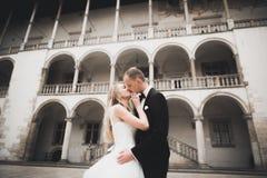 Jeunes mariés de couples de mariage tenant des mains photos stock
