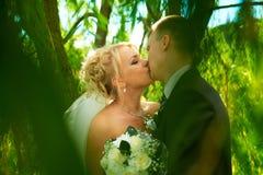 Jeunes mariés de stationnement vert Images libres de droits