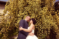 Jeunes mariés embrassant en nature Photos libres de droits