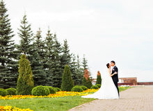 Jeunes mariés embrassant en stationnement photographie stock