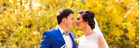 Jeunes mariés en nature d'automne Images libres de droits