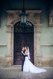 Jeunes mariés heureux image stock