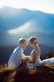 Jeunes mariés heureux ayant l'amusement sur la crête de montagne Pré alpestre Images stock