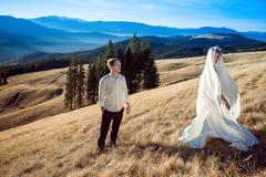 Jeunes mariés heureux ayant l'amusement sur le dessus de la montagne Photo stock