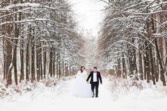 Jeunes mariés heureux dans le jour du mariage d'hiver Images stock