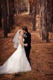 Jeunes mariés heureux marchant dans la forêt d'automne Photographie stock libre de droits