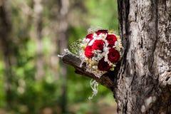 Jeunes mariés heureux sur leur étreindre de mariage Photos stock