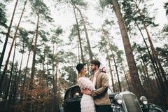 Jeunes mariés magnifiques de nouveaux mariés posant dans la forêt de pin près de la rétro voiture dans leur jour du mariage Images stock
