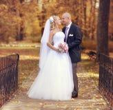Jeunes mariés marchant en parc d'automne Photographie stock