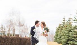 Jeunes mariés marchant en parc d'automne ou d'hiver Image stock