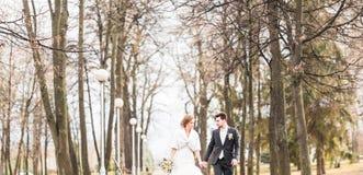 Jeunes mariés marchant en parc d'automne ou d'hiver Images stock