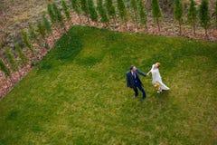 Jeunes mariés marchant sur l'herbe verte tenant des mains Photo stock