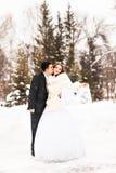 Jeunes mariés pendant l'hiver photographie stock