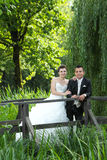 Jeunes mariés posant en nature Image stock