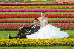 Jeunes mariés posant sur la pelouse avec des fleurs Photographie stock