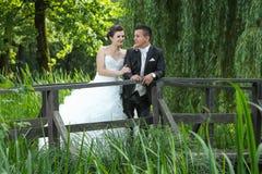 Jeunes mariés regardant l'un l'autre en nature Images stock