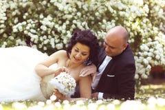 Jeunes mariés s'étendant sur le champ de marguerite des prés Image stock