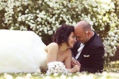 Jeunes mariés s'étendant sur le champ de marguerite des prés Photos stock