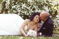 Jeunes mariés s'étendant sur le champ de marguerite des prés Image libre de droits