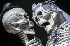 Jeunes mariés squelettiques Photographie stock libre de droits