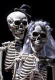 Jeunes mariés squelettiques Photo libre de droits
