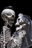 Jeunes mariés squelettiques Image stock