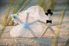 Jeunes mariés Starfish image libre de droits