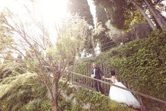 Jeunes mariés sur des escaliers Image libre de droits