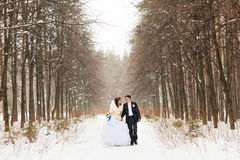 Jeunes mariés sur un parc d'hiver photo stock