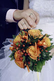 Jeunes mariés tenant des mains Photo libre de droits