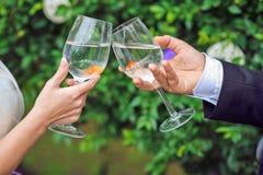Jeunes mariés tenant des verres avec le poisson rouge Images stock
