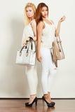 Jeunes modèles avec des sacs à main Images libres de droits