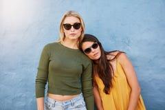 Jeunes modèles femelles élégants sur le fond bleu Photos libres de droits