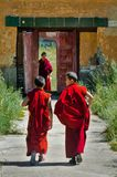 Jeunes moines mongols dans le monastère d'Amarbayasgalant photos libres de droits