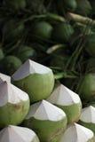 Jeunes noix de coco vertes Image libre de droits
