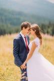 Jeunes nouveaux mariés heureux sur le champ ensoleillé avec le fond de forêt Photos libres de droits