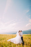Jeunes paires les épousant posant sur le champ ensoleillé venteux avec Forest Hills éloigné et le ciel bleu magnifique comme fond Image stock