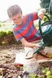 Jeunes plantes de arrosage de garçon en terre sur l'attribution Photo libre de droits
