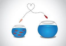 Jeunes poissons vigilants s'échappant du petit bol en verre serré à grand Photo stock