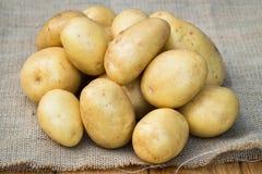 Jeunes pommes de terre jaunes sur la toile à sac photographie stock libre de droits