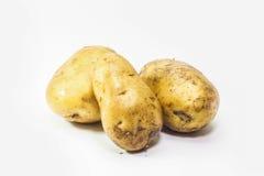 Jeunes pommes de terre sur le fond blanc Photos stock
