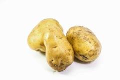 Jeunes pommes de terre sur le fond blanc Image libre de droits