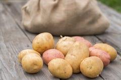 Jeunes pommes de terre sur le Tableau en bois dans le jardin photographie stock libre de droits