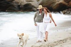 jeunes romantiques de couples de plage Photos libres de droits